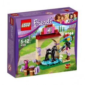 Կոնստրուկտոր 41123 LEGO