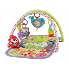 Fisher-Price 3-ը-1-ում Musical Activity Gym, Woodl