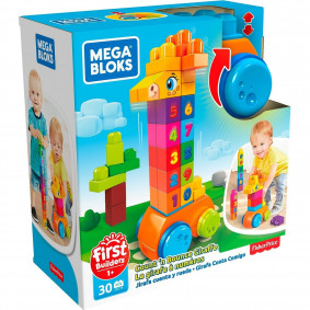 Конструктор GFG19 Mega Bloks