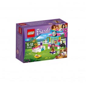 Կոնստրուկտոր 41302 LEGO